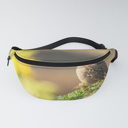 Portrait of a White-Crowned Sparrow Fanny Pack