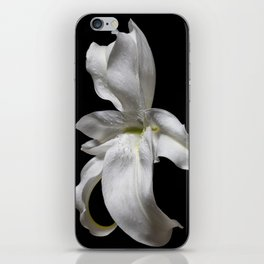 White and Yellow Lily iPhone Skin