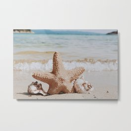 starfish ii Metal Print