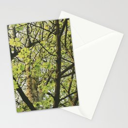 Sycamore tree leaves (Acer pseudoplatanus). Norfolk, UK. Stationery Cards