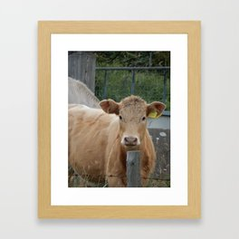 The Cow Framed Art Print