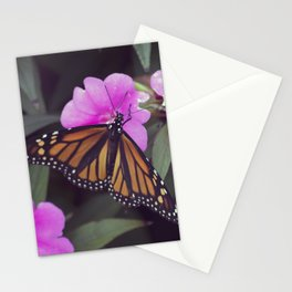 Longwood Gardens Autumn Series 343 Stationery Cards