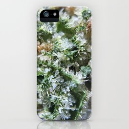 Lemon Girl Scout Cookies Strain iPhone Case