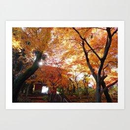Autumn Heaven Art Print