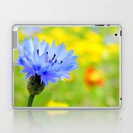 Bachelor's Buttons Flower Laptop & iPad Skin