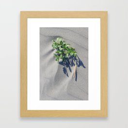 Shoreline Shadow 2 Framed Art Print