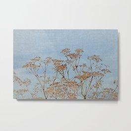 Hogweed - Almost Autumn - JUSTART © Metal Print