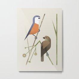 Marsh Seedeater (cln) Metal Print
