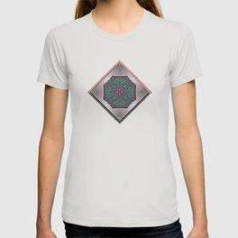 Southwestern Garden 2 T-shirt