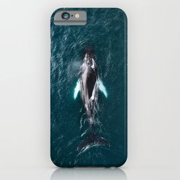 Humpback Whale in Iceland - Wildlife Photography iPhone Case