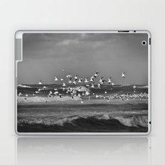 Seagulls flying over the mediterranean sea in Tel Aviv,Israel Laptop & iPad Skin