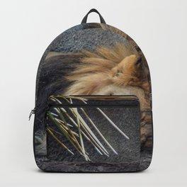The Lion Sleeps Tonight Backpack