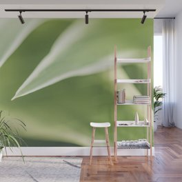 Close up of a Chlorophytum, Macro, Green leaves plant Art Print Wall Mural