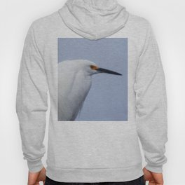 Modeling Assignment Hoody