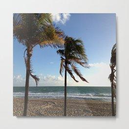 Palms Ft Lauderdale Beach Metal Print
