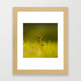 Small Mushrooms on Grass Autumn Scene #decor #society6 #buyart Framed Art Print