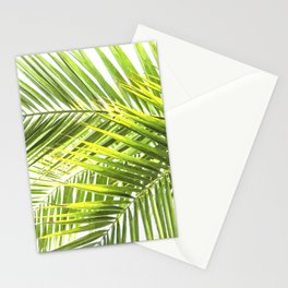 Palm leaves tropical illustration Stationery Cards