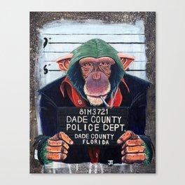 Monkey mugshot Canvas Print