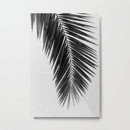 Palm Leaf Black & White I Metal Print