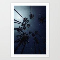 Palm Trees, Night Sky, Stars, Moon Art Print