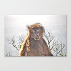 Golden Ancestor Dad Canvas Print