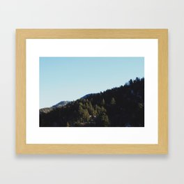 It's Beautiful, I Tell You. Framed Art Print