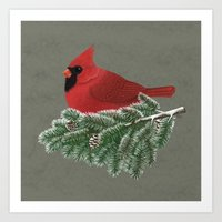 cardinal Art Prints featuring Cardinal by Sam Magee