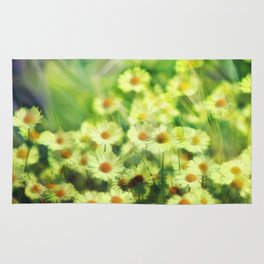 """""""Spring of daisies, green and sunlight"""" Rug"""
