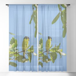 Yellow Bird - II Sheer Curtain