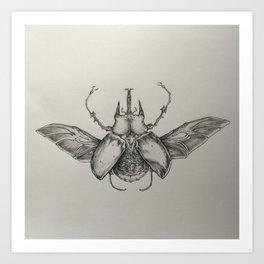 Elephant Beetle Pencil Drawing Art Print