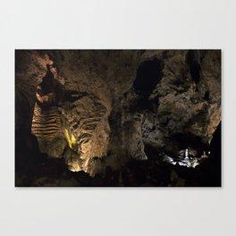 Carlsbad Caverns VII Canvas Print