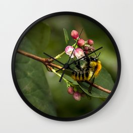 Photograph of a bee collecting nectar in a local park Wall Clock
