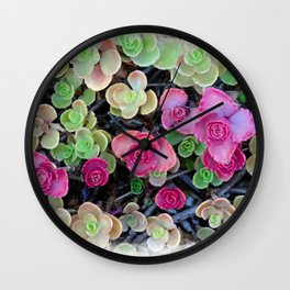 Pistachio and Raspberry Succulents Wall Clock