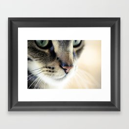 The Cat's Whiskers Framed Art Print