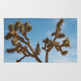 Joshua Tree National Park II Rug