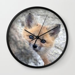 Watercolor Fox, Red Fox 28, Union Reservoir, Boulder Wall Clock