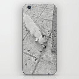 white corner iPhone Skin