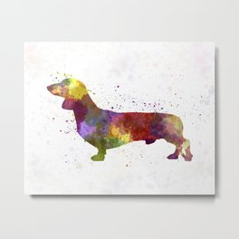 Dachshund in watercolor Metal Print