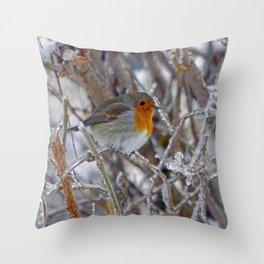 Robin in Winter | Rotkehlchen im Winter Throw Pillow