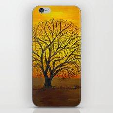 Rural sunset iPhone & iPod Skin