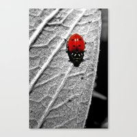 ladybug Canvas Prints featuring Ladybug by Derek Fleener