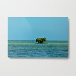 Tree Island Metal Print