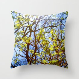Green Leaves, Shining Sun, Blue Sky. Spring In The Forest Throw Pillow