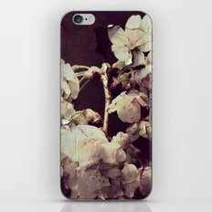 Blossoms Breaking iPhone & iPod Skin