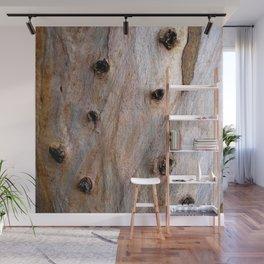 Eucalyptus Tree Bark and Wood Texture 14 Wall Mural