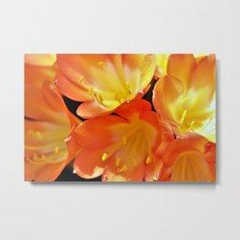 Orange Yellow Flowers by Reay of Light Metal Print