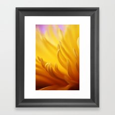 Flaming Petals Framed Art Print