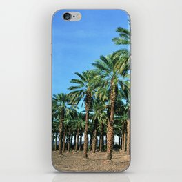 Date Palm Trees iPhone Skin