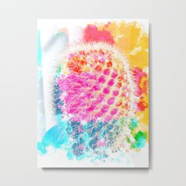 closeup cactus with colorful painting abstract in pink orange blue Metal Print