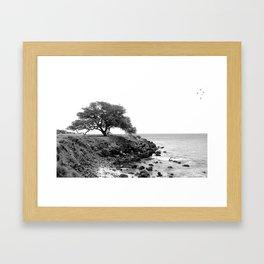 Big Island Tree Framed Art Print